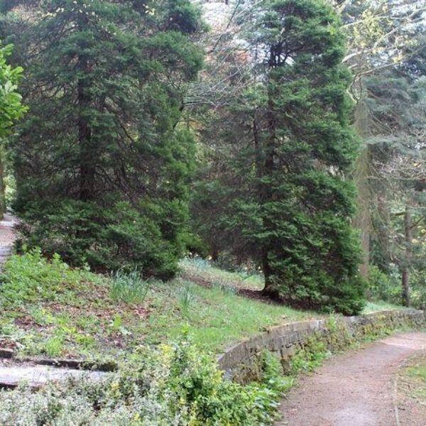 Prince Of Wales Park, Bingley photo 2