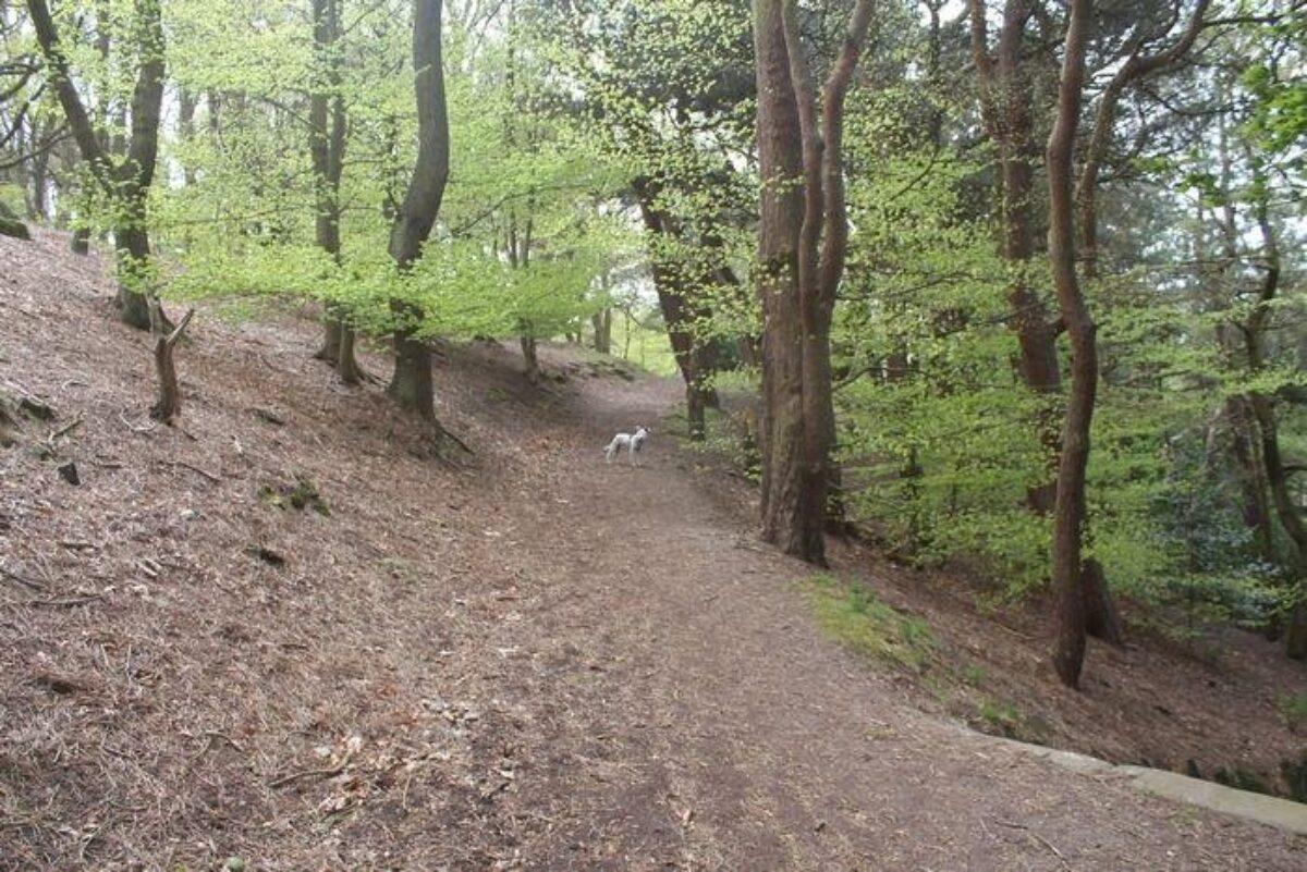 Prince Of Wales Park, Bingley large photo 3