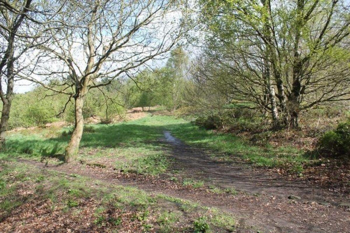 Prince Of Wales Park, Bingley large photo 4
