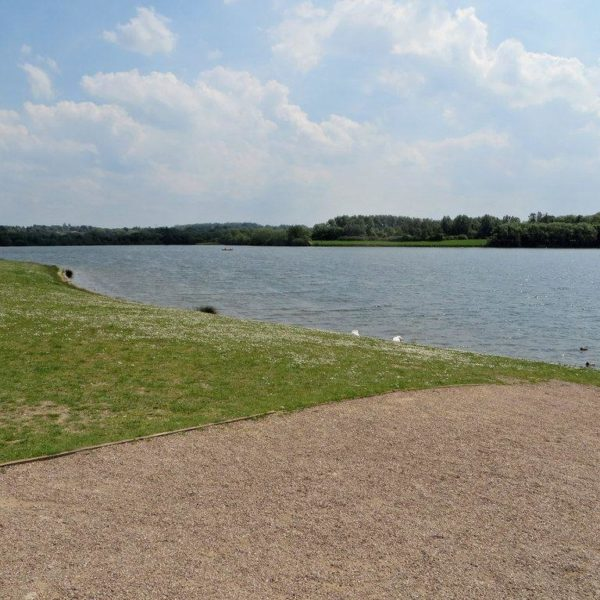 Dog walk at Pugneys Country Park
