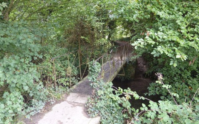 Radwell Meadows Dog walk in Hertfordshire