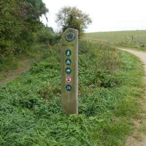 Radwell Meadows