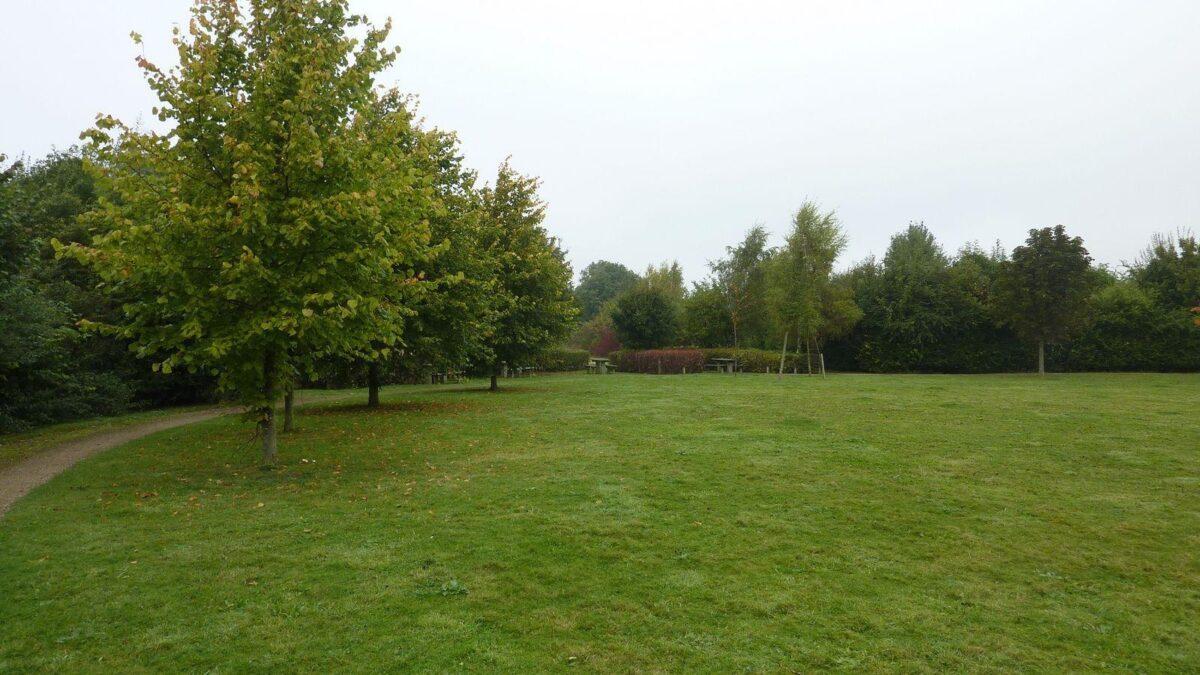 Radwell Meadows large photo 5