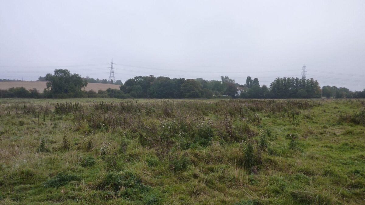 Radwell Meadows large photo 8