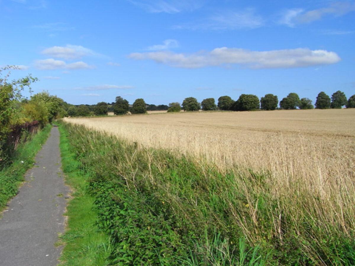 Ridgeway Circular large photo 1