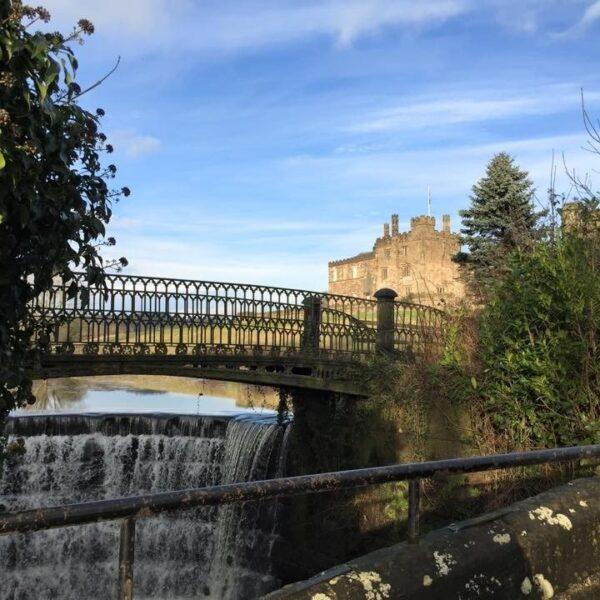 Ripley Castle Dog Walk photo 1