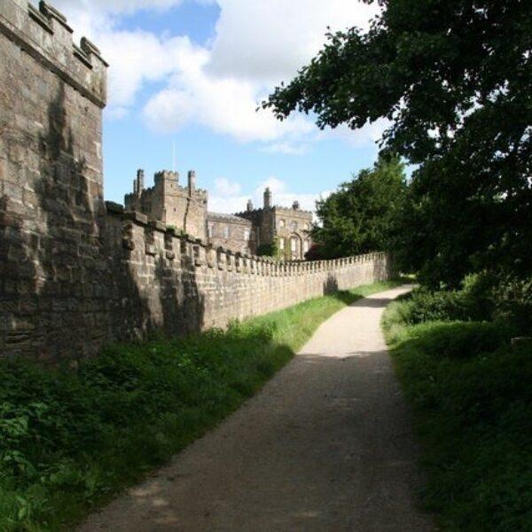 Dog walk at Ripley Castle Dog Walk