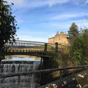Ripley Castle Dog Walk