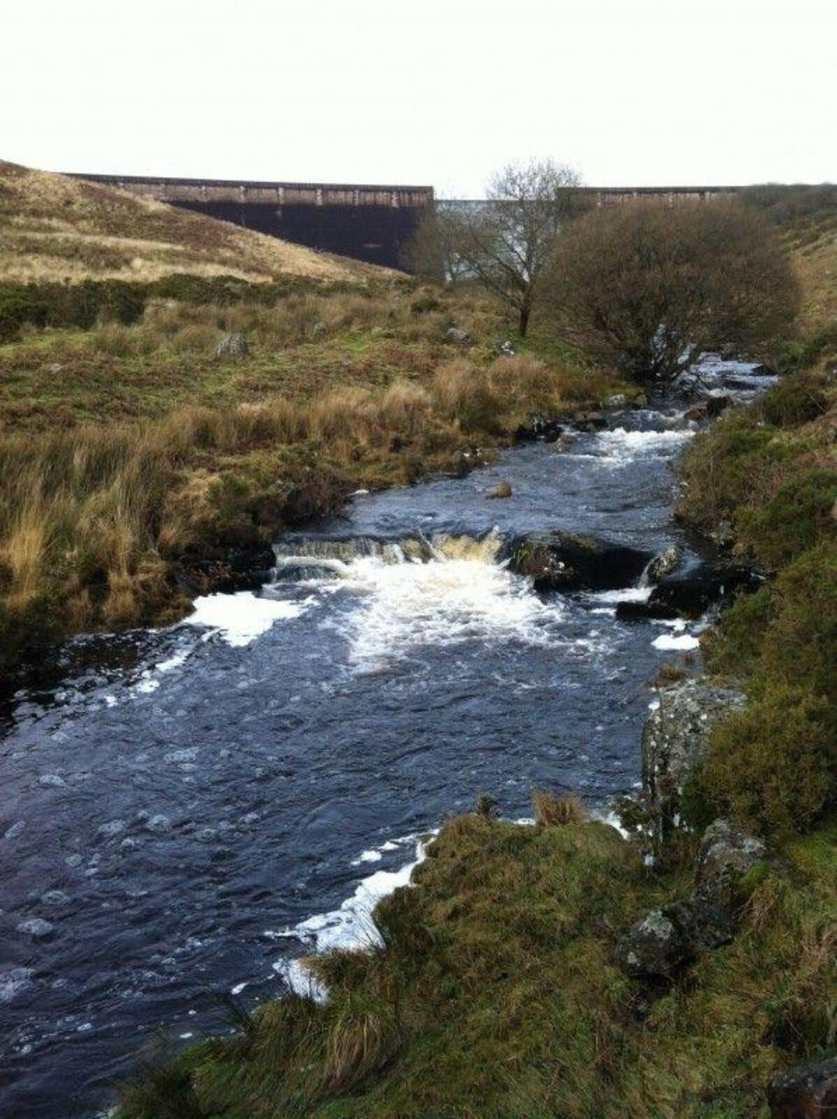 River Avon Dam, Dartmoor large photo 5