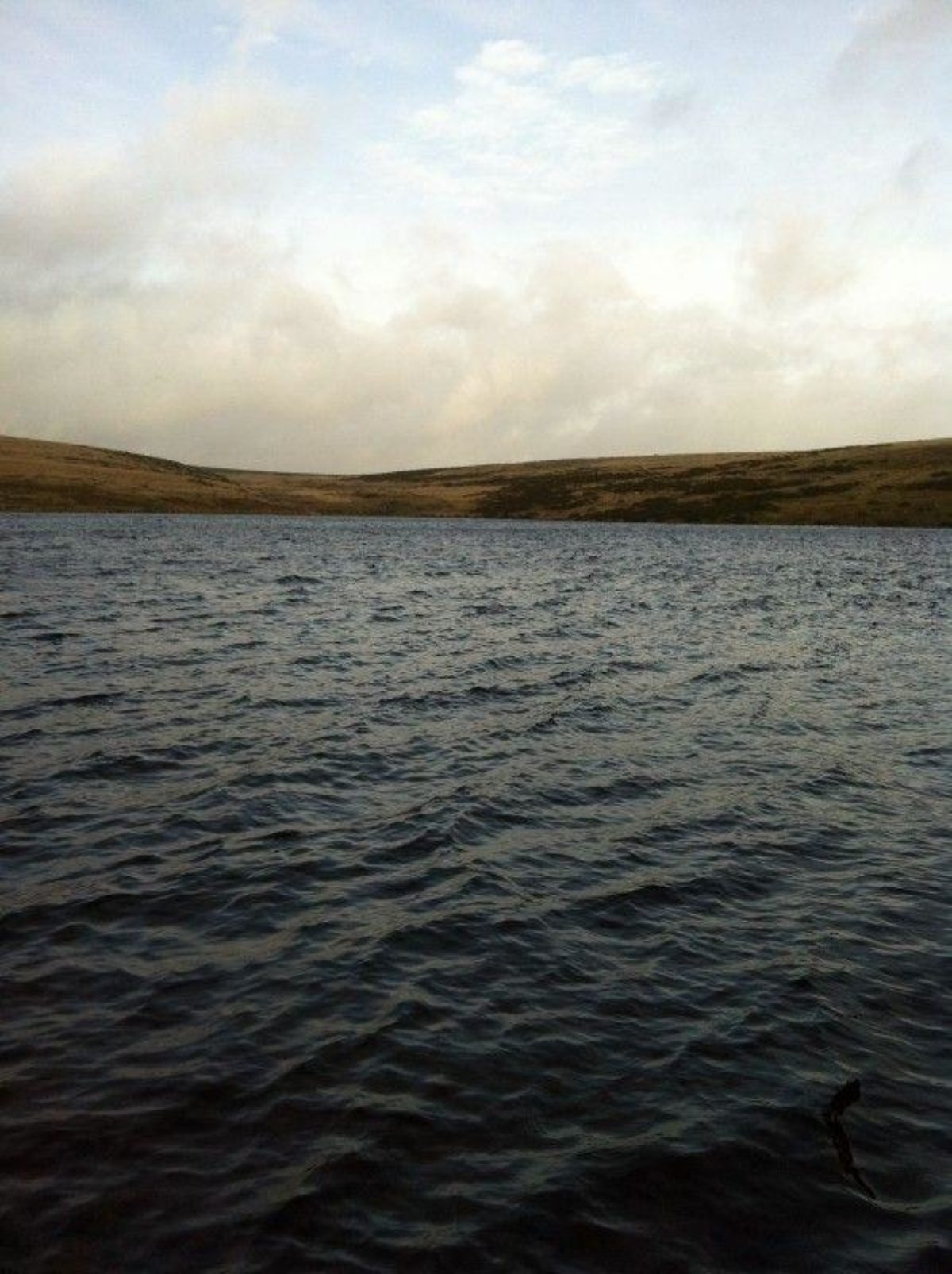River Avon Dam, Dartmoor large photo 7