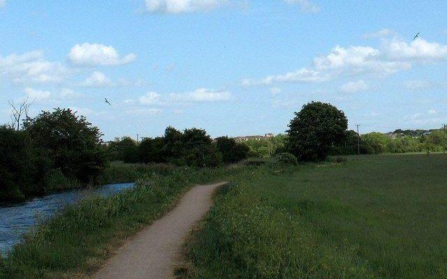 River Stort Dog walk in Essex
