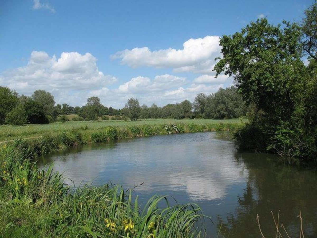 River Stort large photo 1