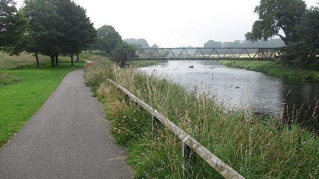 Dog walk at Riverview, Rover Don