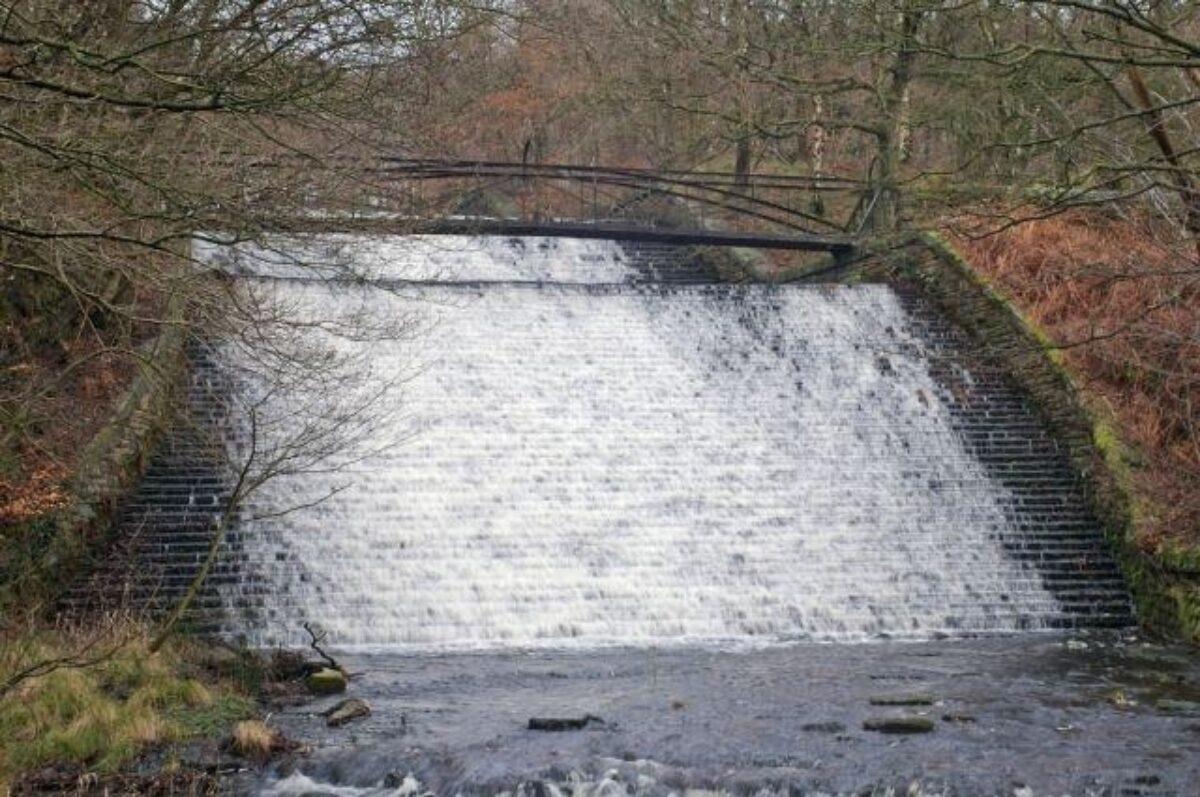 Roddlesworth Reservoirs And Tockholes Plantation large photo 3