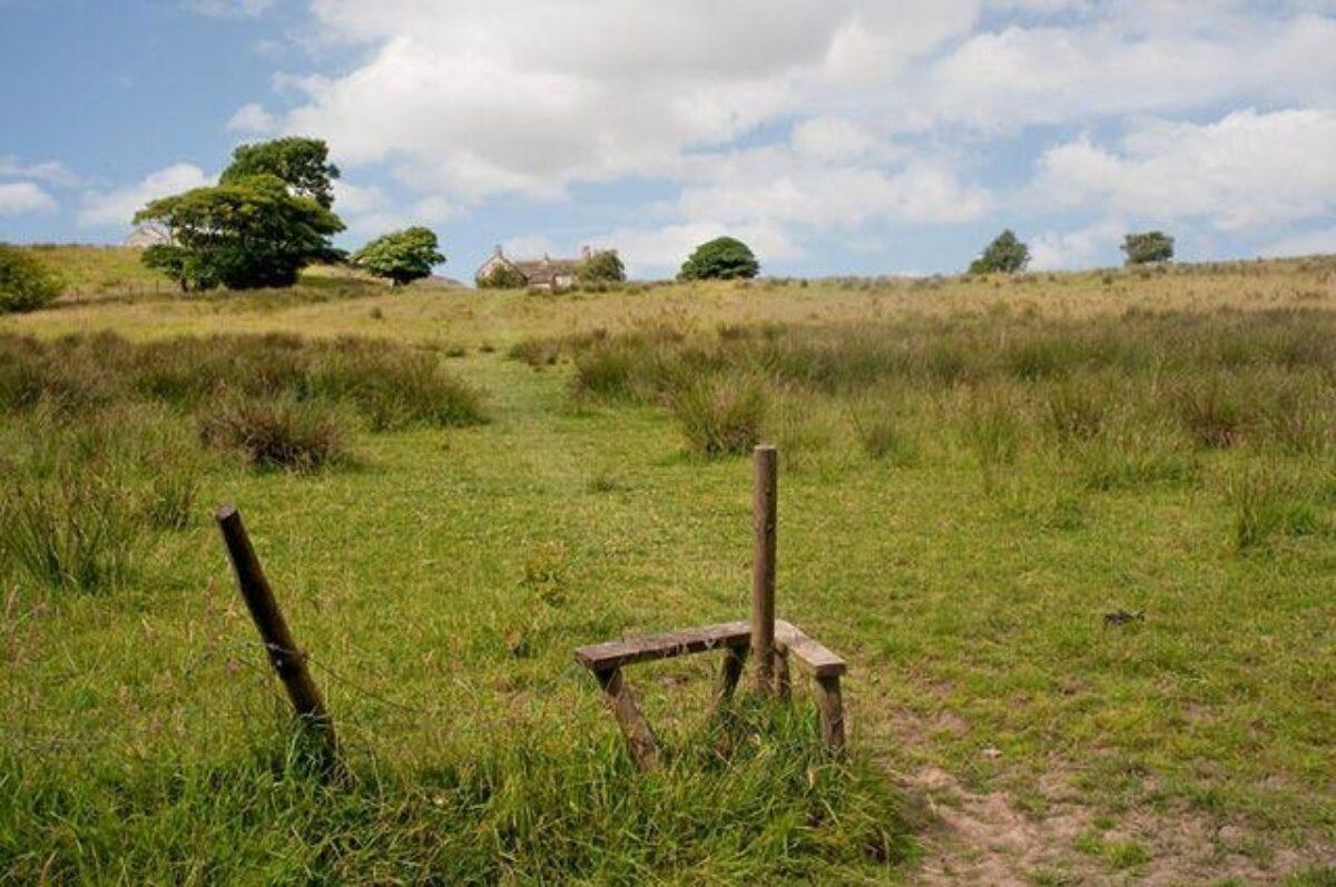 Roddlesworth Reservoirs And Tockholes Plantation large photo 4