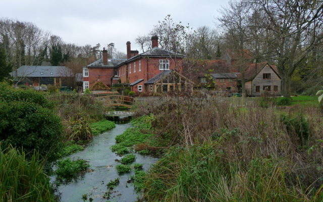 Rooksbury Mill Dog walk in Hampshire