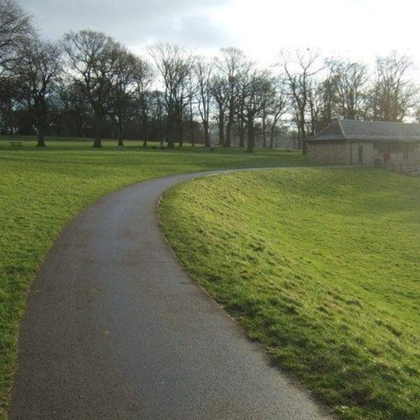 Dog walk at Roundhay Park