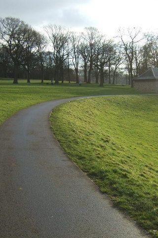 Dog walk at Roundhay Park photo