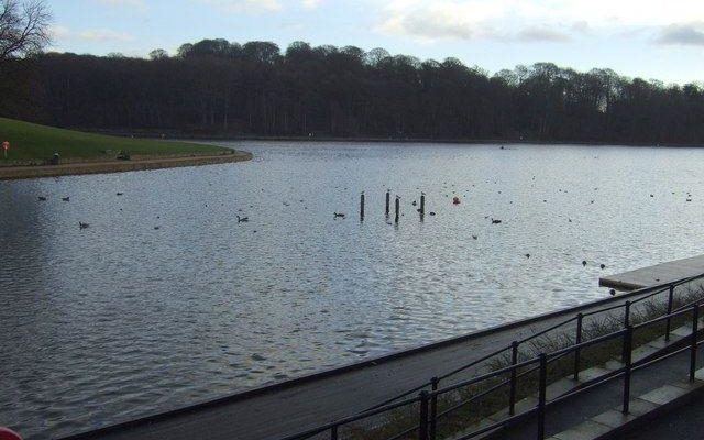 Roundhay Park Dog walk in Yorkshire (West)