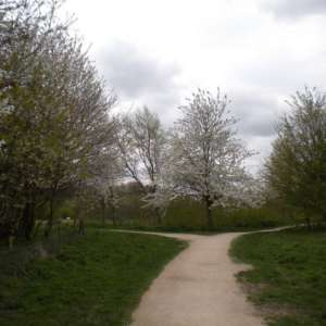 Ruddington (rushcliffe) Country Park