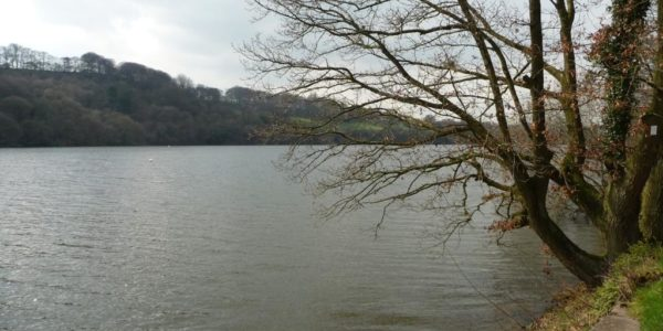Brereton Country Park to the Swettenham Arms