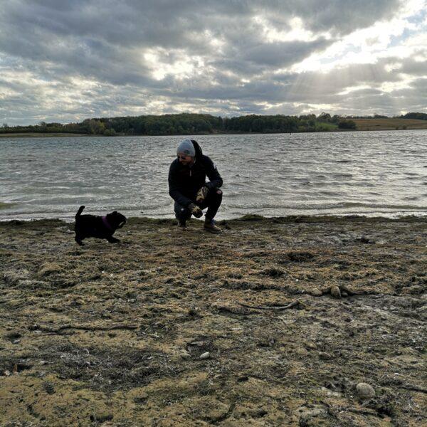 Dog walk at Rutland Water Reservoir