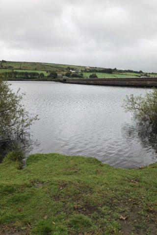 Dog walk at Ryburn Reservoir photo