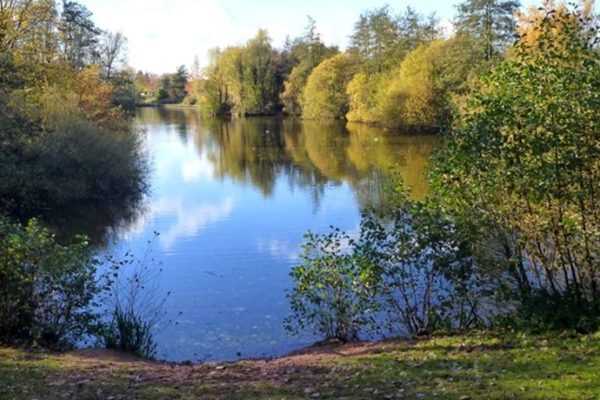 Ryton Pools Country Parkphoto