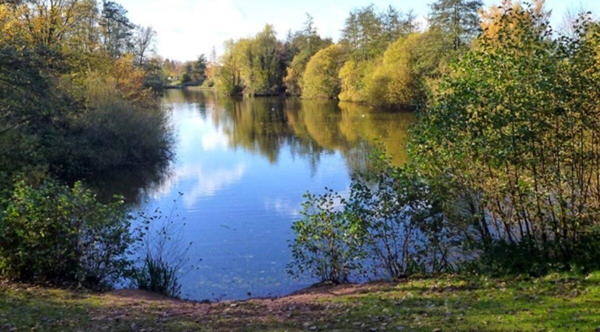 Ryton Pools Country Park large photo 1
