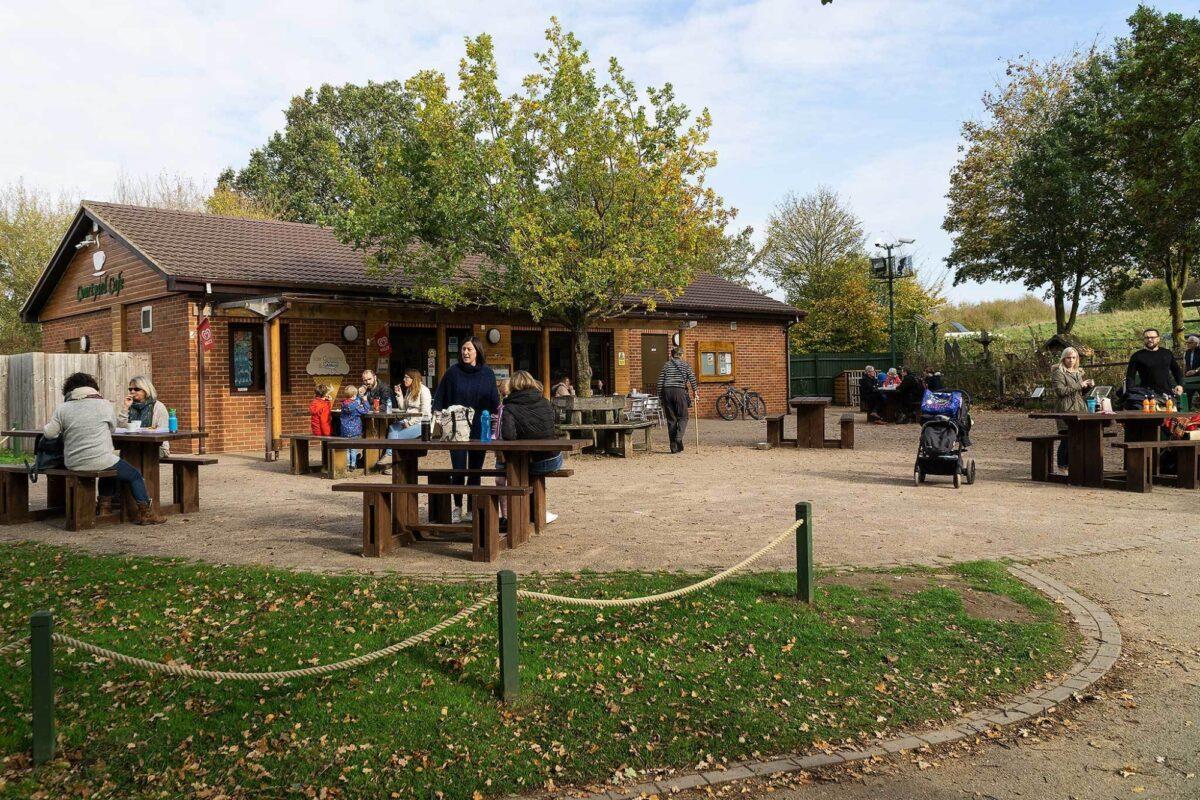 Ryton Pools Country Park large photo 3