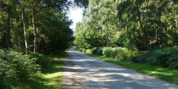 Sandringham Country Park
