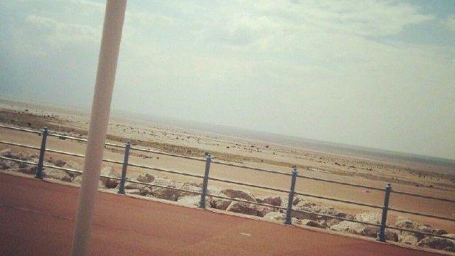 Dog walk at Sandylands Promenade And Beach