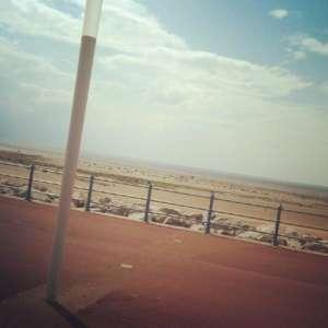 Sandylands Promenade And Beach