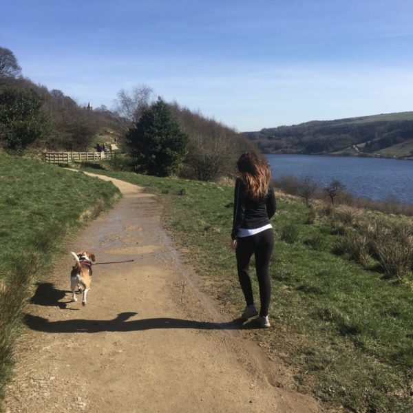 Dog walk at Scammonden Reservoir