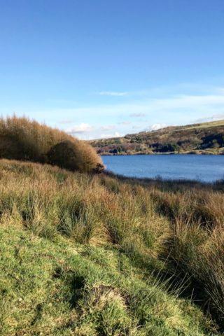Dog walk at Scammonden Reservoir photo