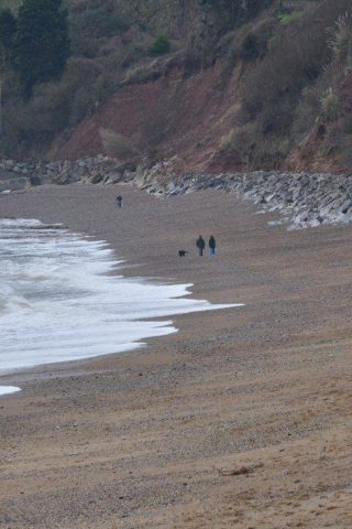 Dog walk at Seaton Beach photo