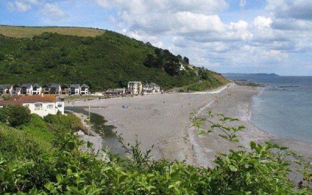 Seaton Beach Dog walk in Cornwall