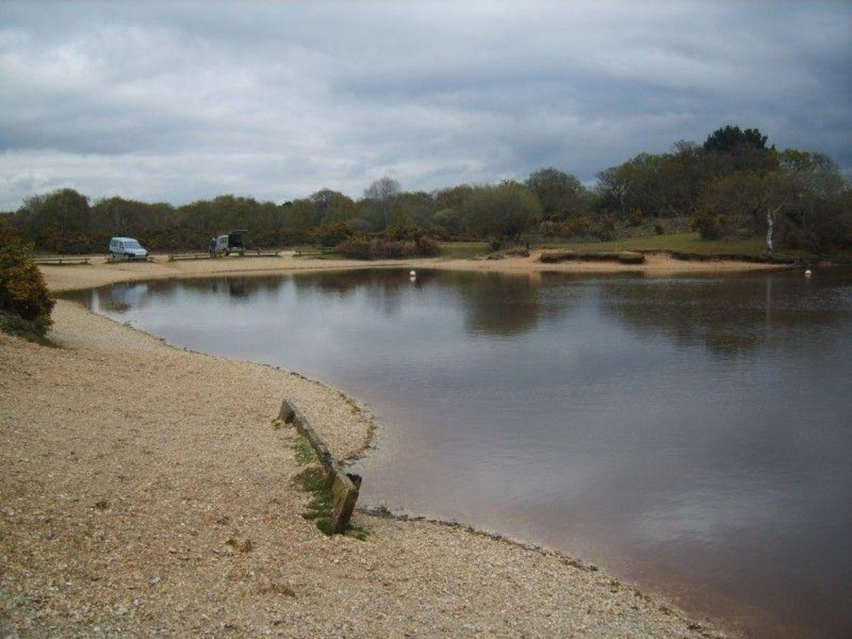 Setley Pond (New Forest) large photo 4