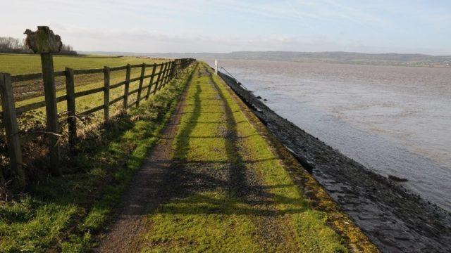 Dog walk at Severn Way, River Severn