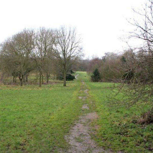 Shady Lane Arboretum photo 1