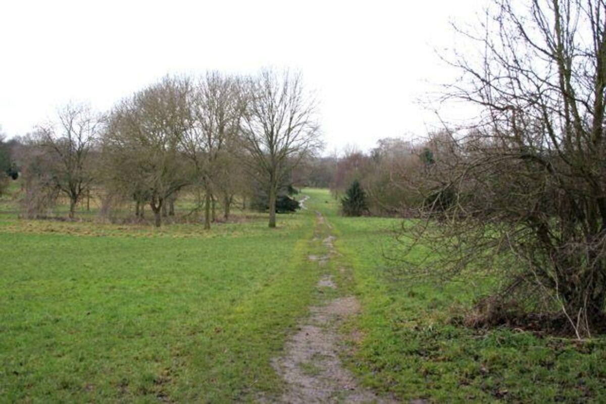 Shady Lane Arboretum large photo 1
