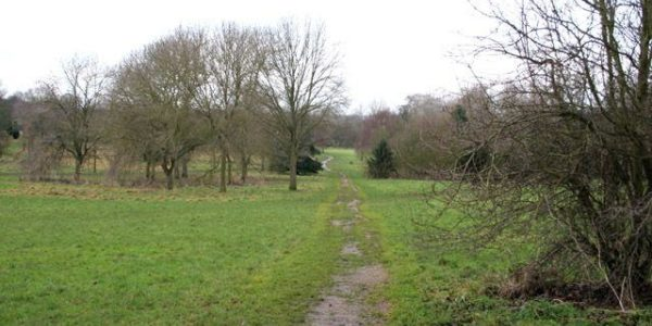 Aylestone Meadows