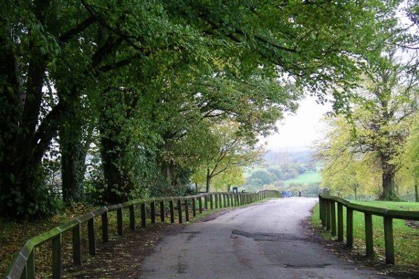 Shipley Country Parkphoto