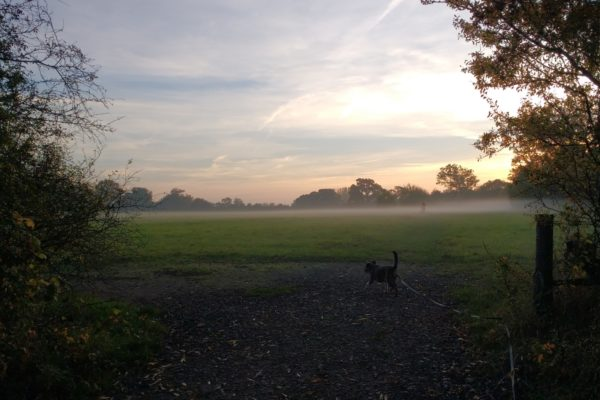 Southwick Country Parkphoto