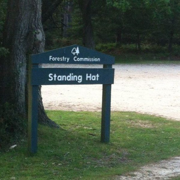 Standing Hat, New Forest photo 1