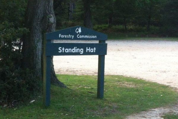 Standing Hat, New Forestphoto