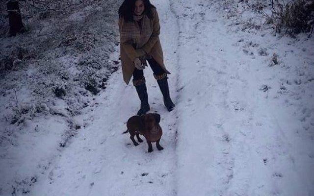 Stanton Stroll Dog walk in Derbyshire