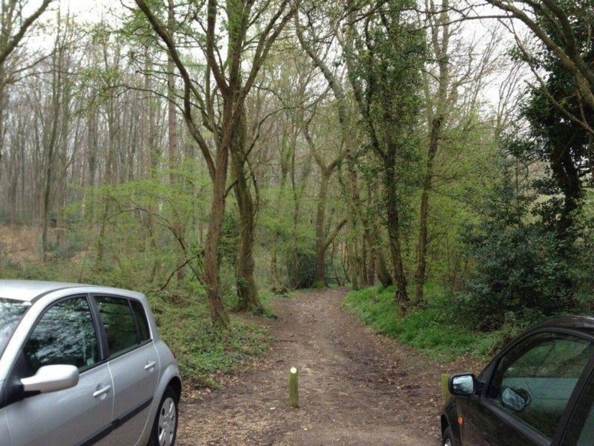 Stoke Park Wood large photo 1
