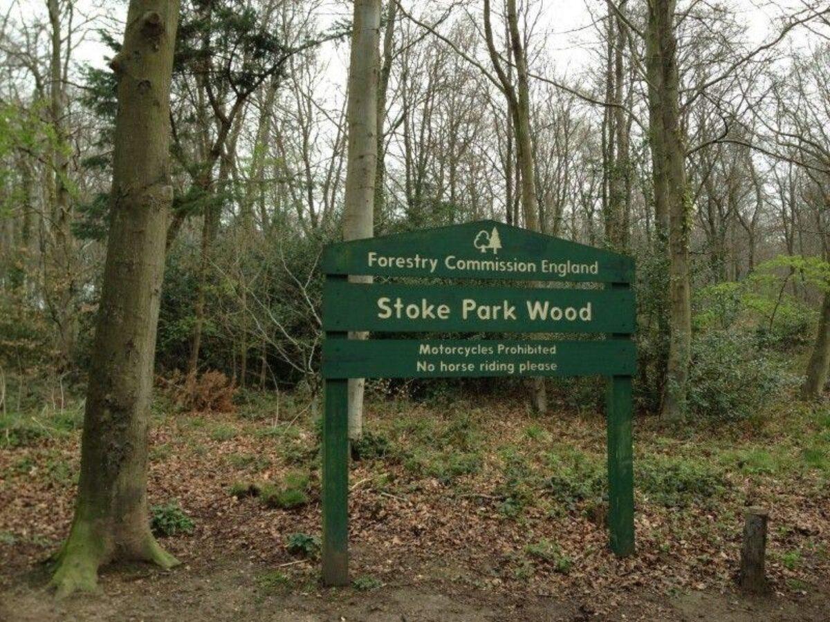 Stoke Park Wood large photo 2