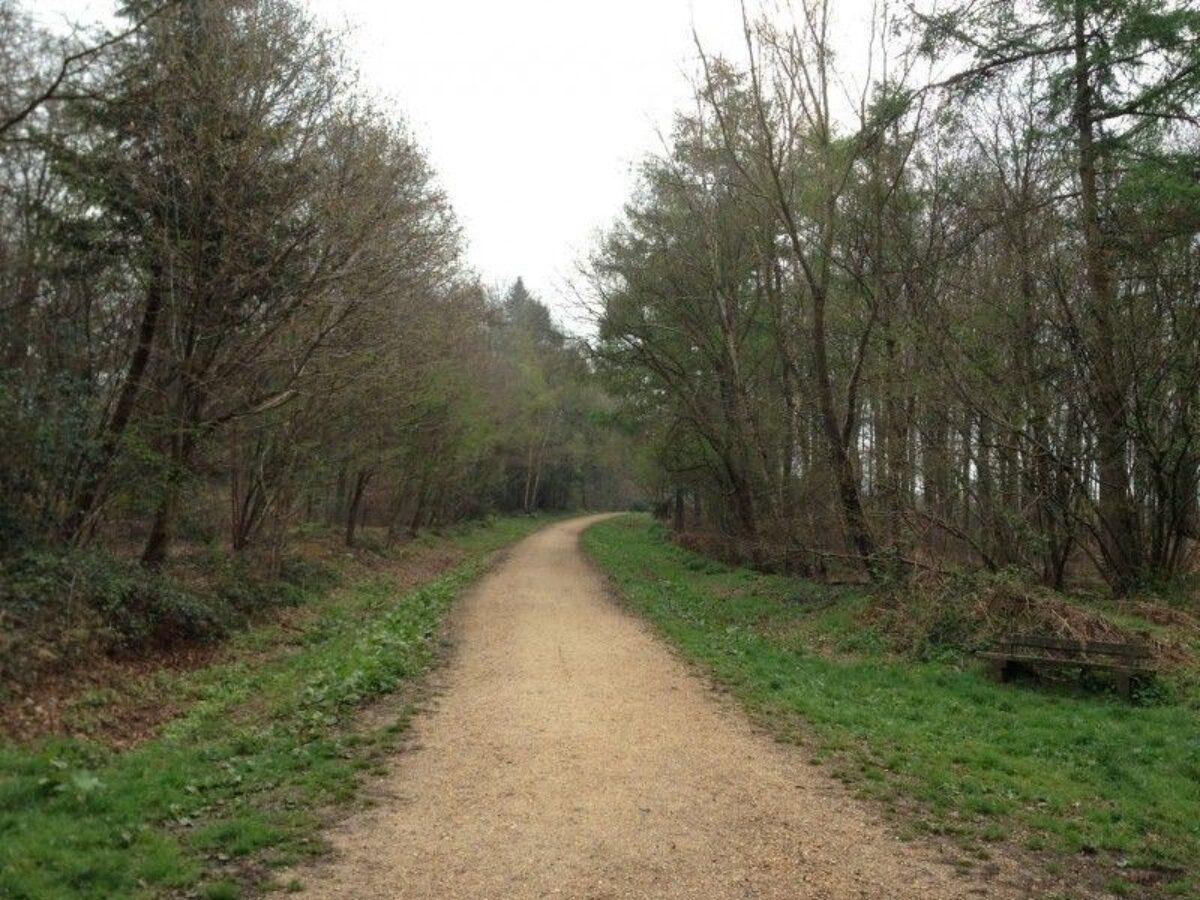 Stoke Park Wood large photo 7